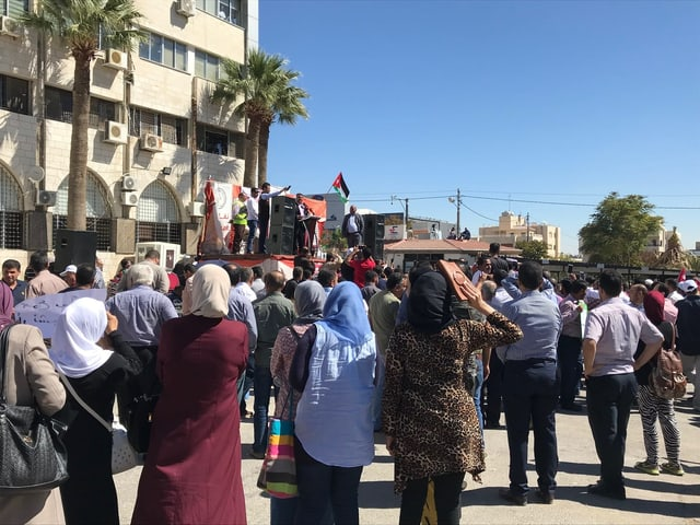 Frauen und Männer demonstrieren, fotografiert von hinten.