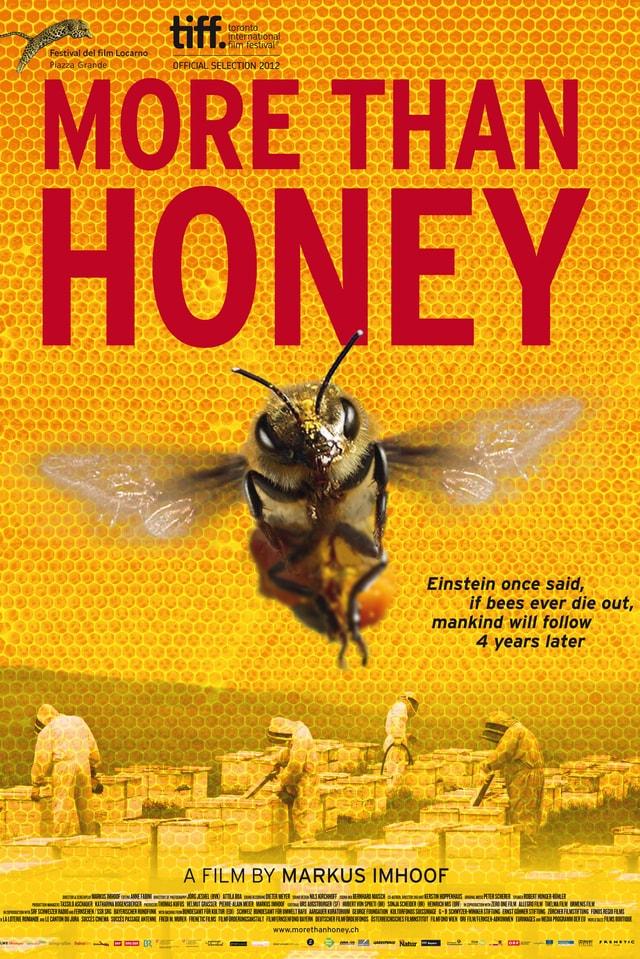 Das Filmplakat von «More than honey»