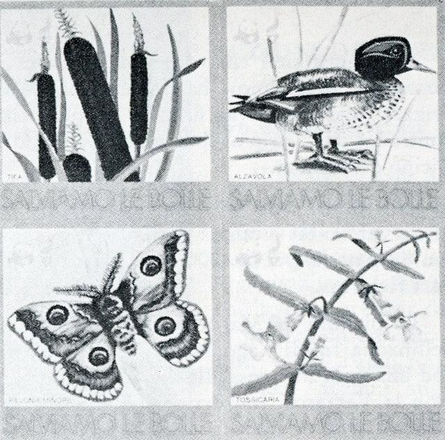 "Marcas ""Pro Natura"" en favur da la protecziun da l'ambient"