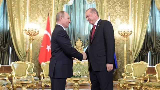 Erdogan gibt Putin die Hand.