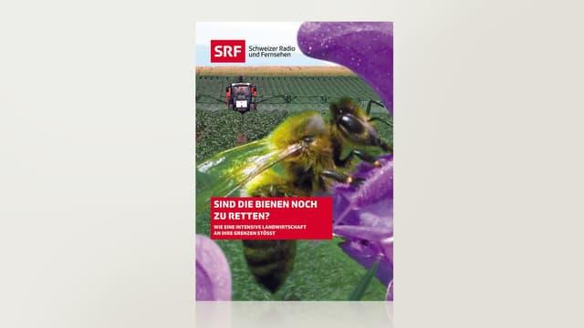 Sind die Bienen noch zu retten?