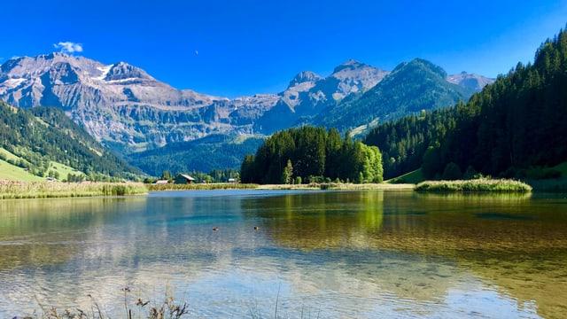 Blick über den Lenksee zu den fast wolkenlosen Bergen des Berner Oberlandes.