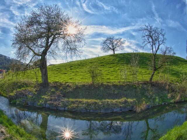 Landschaft mit Bäumen, grünen Wiesen und der Sonne am blauen Himmel, die sich in einem Bach spiegelt.