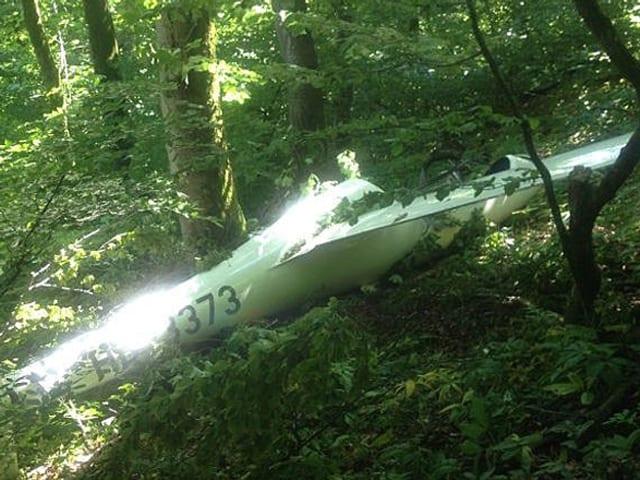 Flugzeugwrack im Wald
