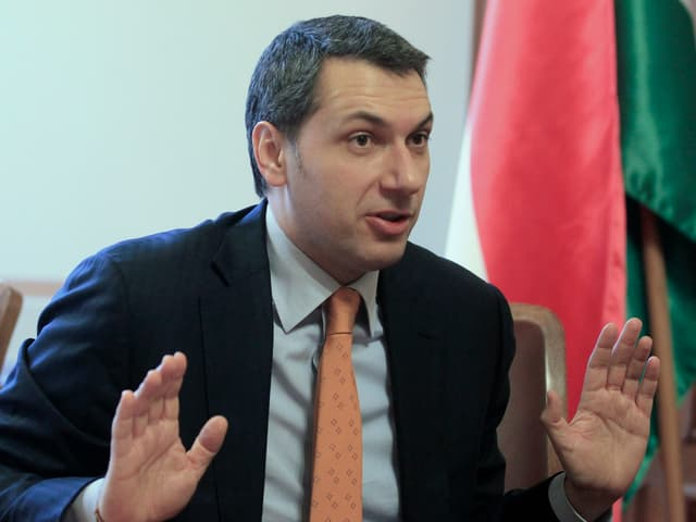 Sitzend vor ungarischer Fahne mit halb erhobenen Händen.