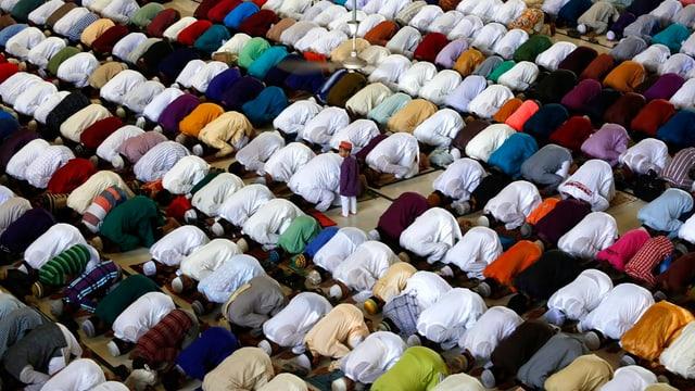 Niederkniende muslimische Männer beim Gebet in einer grossen Moschee.