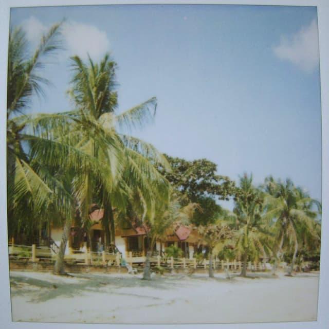 Verblichene Polaroidfoto eines Sandstrands mit Palmen.