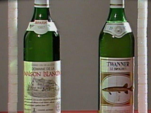 Zwei Weissweinflaschen von 1988 mit Anzahl Zuckerwürfel, die in ihnen enthalten sind.