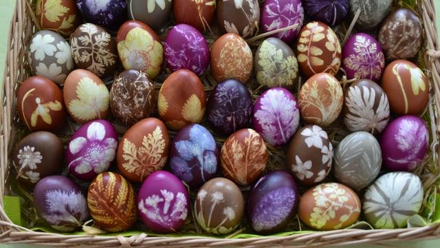 Farbige Eier.