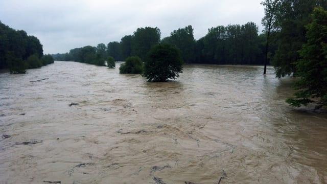 Hochwasser bei der Thur.