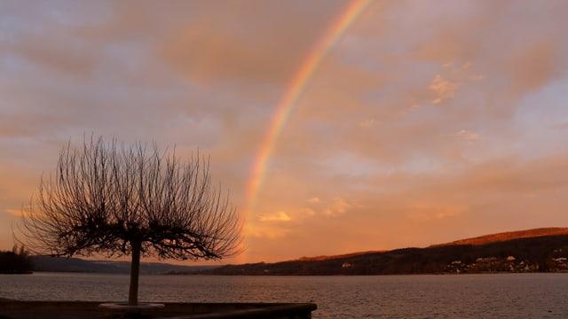 Ein Regenbogen über einem See. Morgenstimmung.