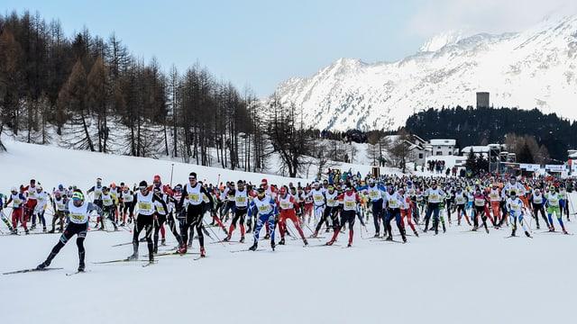 Curridras e curriders da passlung al maraton da skis engiadinais 2016.