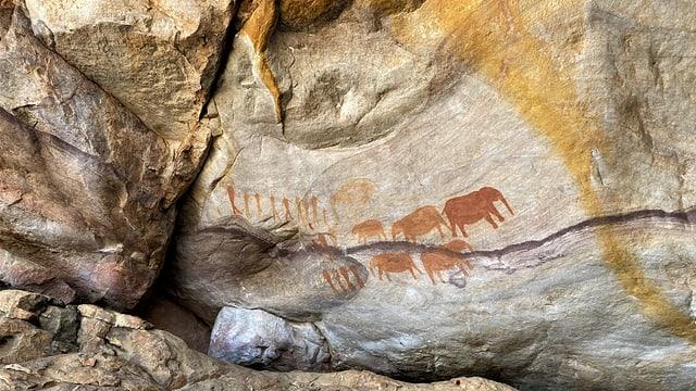 Höhlen-Tierzeichnung der Khoi-San in den Cederbergen Südafrikas.