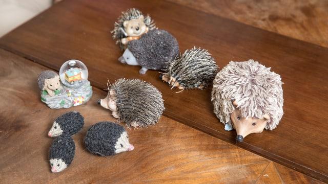 Auf einem Tisch liegen verschiedene Miniatur-Igel.