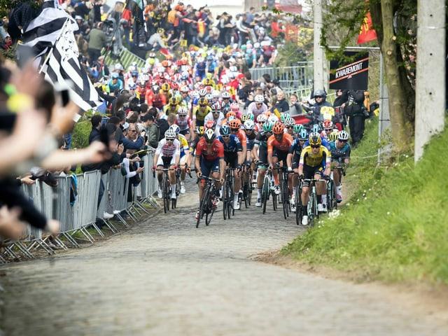 Neben Start- und Zielbereich werden in diesem Jahr auch die Anstiege – hier der Oude Kwaremont – für Zuschauer gesperrt sein.