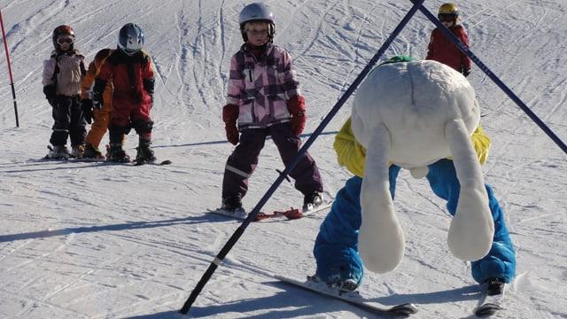 scola da skis