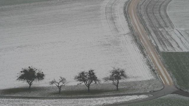 Blick auf leicht angezuckerte Felder. Ohne Sonne gibt es nirgends Schatten.