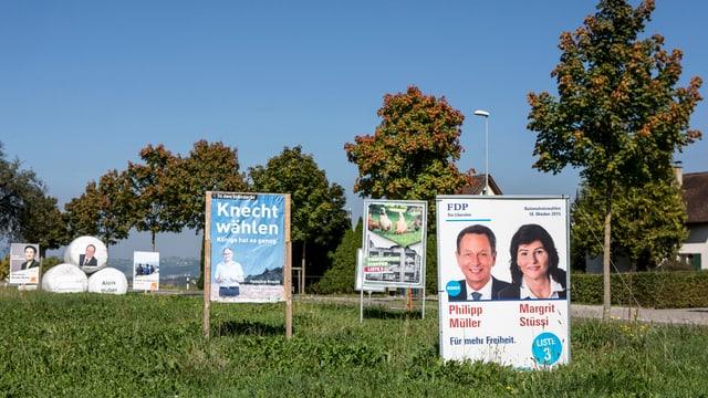 Wahlplakate in einer Wiese.