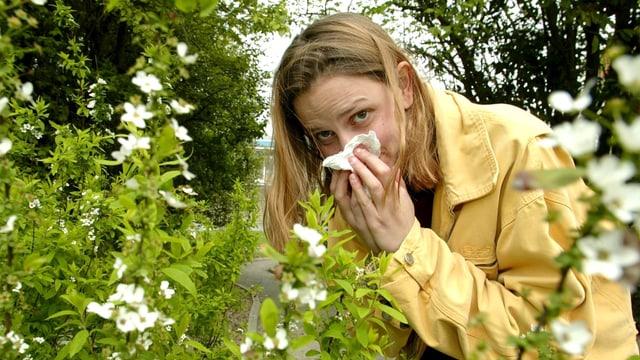 Frau putzt Nase mit Taschentuch und steht bei einem Blumenstrauch