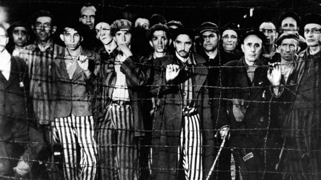 KZ Häftlinge hinter Zaun