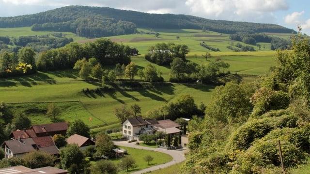 Grünes Tal und ein paar Häuser