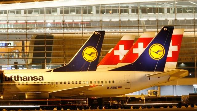 Die Maschinen der Swiss und Lufthansa auf dem Boden.