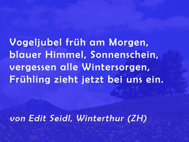 Gedicht von Edit Seidl: Vogeljubel früh am Morgen, blauer Himmel, Sonnenschein, vergessen alle Wintersorgen, Frühling zieht jetzt bei uns ein.