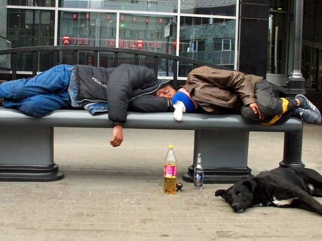 Zwei Männer liegen auf einer Bank, Hund am Boden.