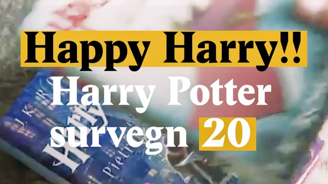 Laschar ir video «Happy Harry!! Harry Potter survegn 20»