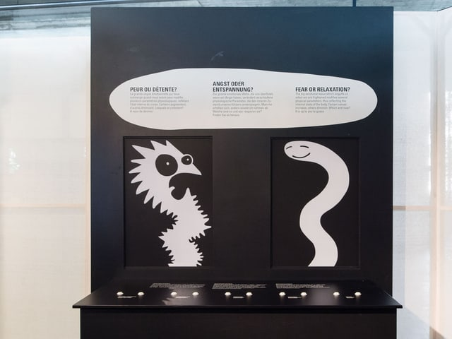 Teil der Ausstellung «Keine Panik» im Zoologischen Museum Zürich