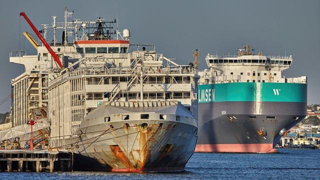 Das nun gesunken Schiff Gulf Livestock 1 vor einem Jahr in einem australischen Hafen.