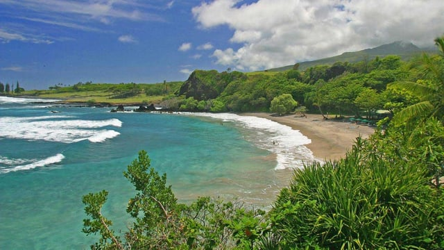 Hamoa Beach auf Maui. Blaues Wasser und Palmen.