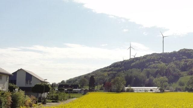 Visualisierung der geplanten Windräder auf dem Chroobach bei Hemishofen.