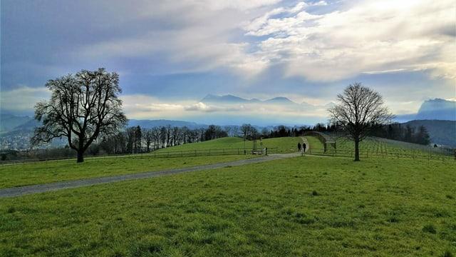 Am Samstagmorgen war die Rigi mit mystischen Wolken umgeben.