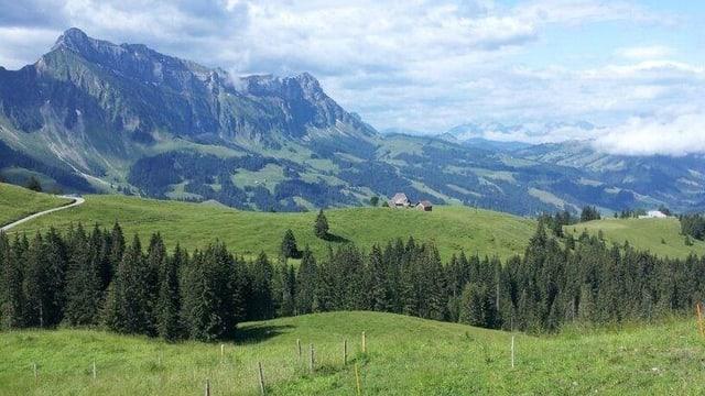 Aussicht von der Alp Imbrig ins Tal.