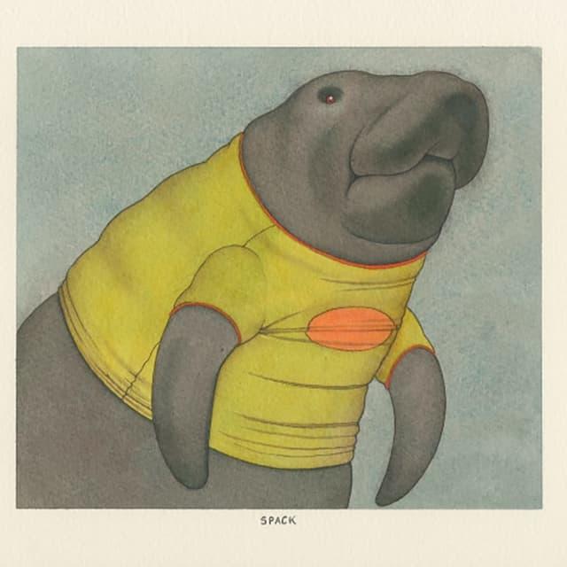 Ein Seelöwe trägt ein viel zu enges, gelbes T-shirt.