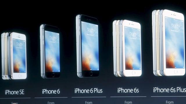 iPhone-Modelle auf der Leinwand