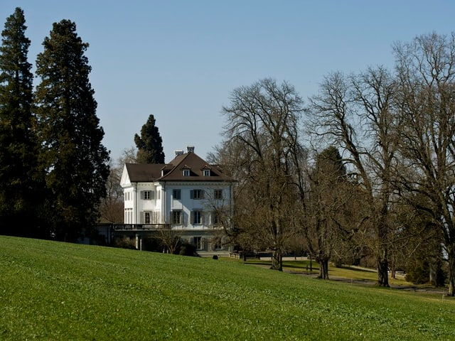 Das weisse Schloss Salenstein, umgeben von Bäumen und Wiesen
