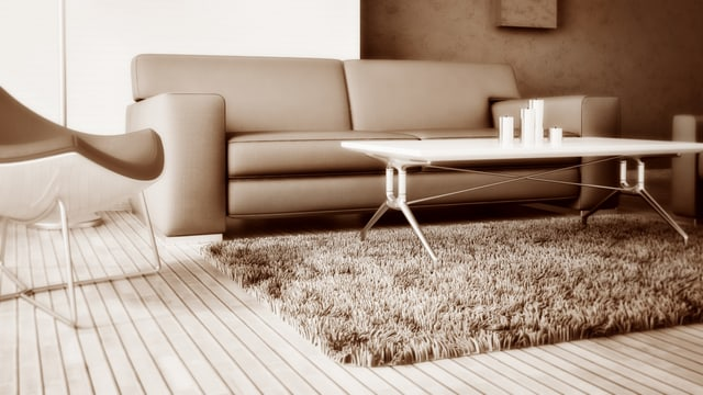 Was, wenn der teure Teppich plötzlich von Motten zerfressen ist?