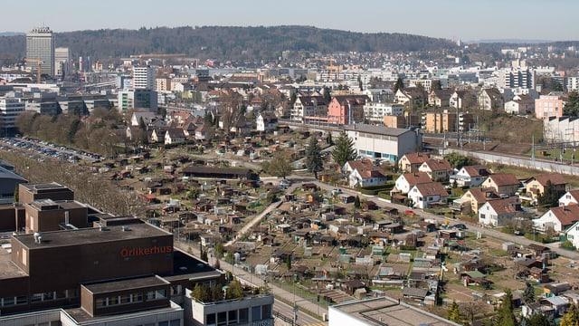 Heute stehen im Gebiet, auf dem die Stadt Zürich neue Wohnungen bauen will, noch Schrebergartenhäuschen.
