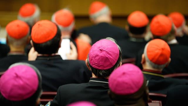 Bischöfe mit roten und pinken Hütchen an der Bischofsynode. Sie sind von hinten fotografiert.