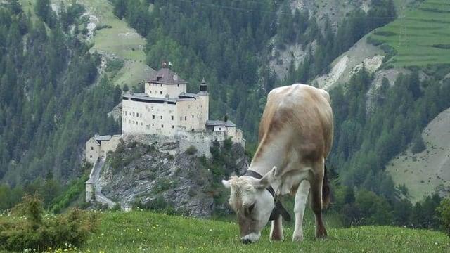 Das Schloss Tarasp