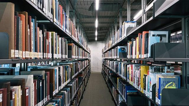 Bücher lonks, Bücher rechts: ein Blick in die Flucht einer Bibliothek.