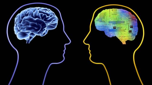 Eine Grafik zeigt die Umrisse von zwei Köpfen. In einem steckt ein Gehirn, im zweiten Kopf stattdessen eine Platine.