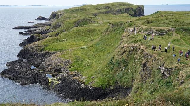 Blick auf eine grün bewachsene Insel.