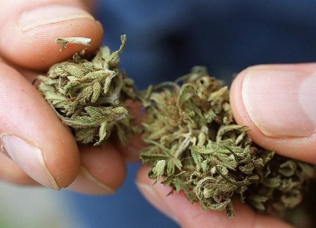 Finger und Cannabis