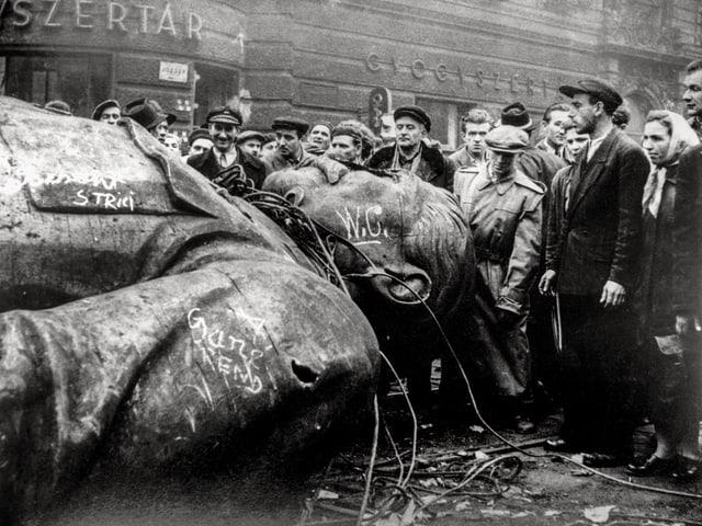 Schwarz-weiss-Bild: Ungarer betrachten die gefallene Stalin-Statue.