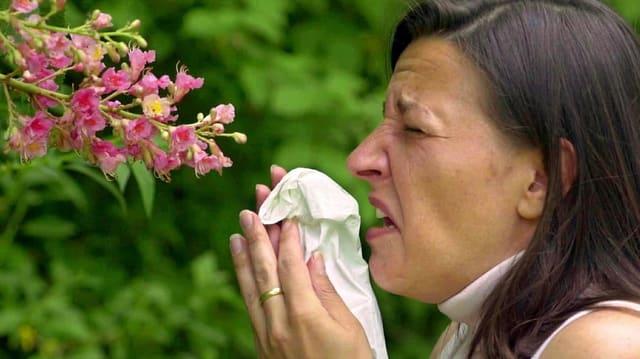 allergicra da pollens