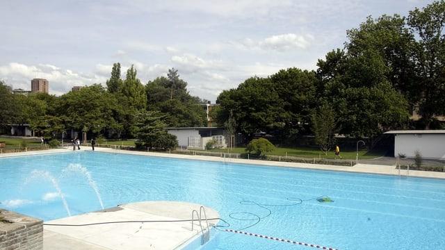 Ein leeres Schwimmbecken, dahinter Bäume und Büsche.