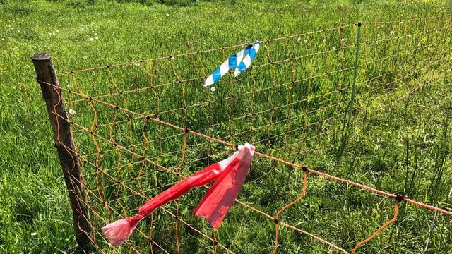 Haag mit blauweissen und rotweissen Bändern